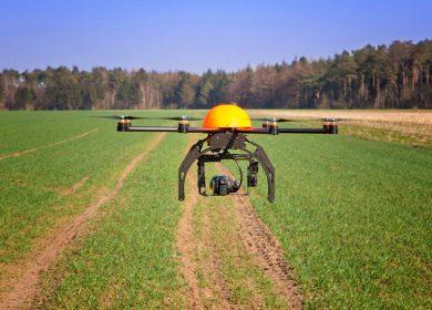 Inspecciones agrícolas